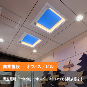 納入事例10【青空照明「misola(みそら)」】